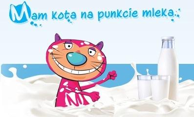 kota_mam_1
