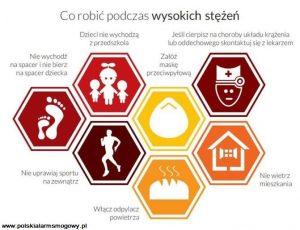 PolskiAlarmSmogowy-infografika